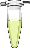 microtube