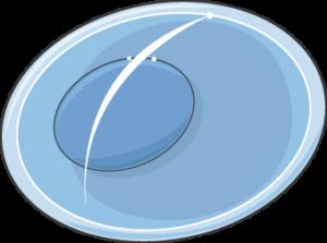 plasmodium ookyste