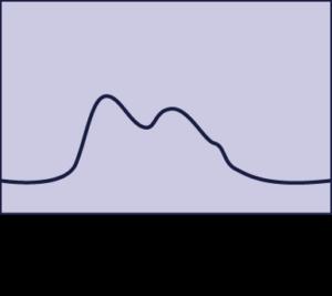 Pouls artériel bisferiens