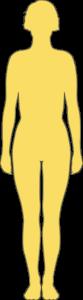 Silhouette femme 30