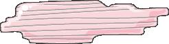 cardiomyocyte