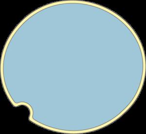 Cellule vide avec vacuole