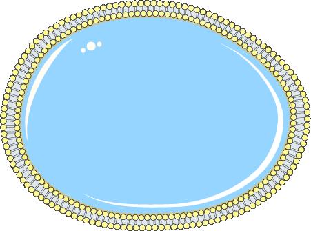 Cellule