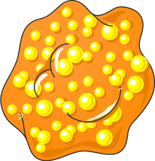 Cellule spumeuse