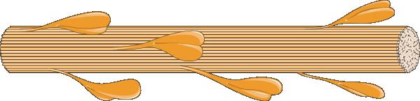 myosine